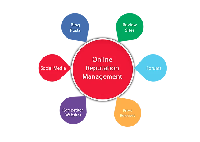 An infographic explaining that Online Reputation Management includes blog posts, review sites, social media, forums, press releases and competitor's websites.