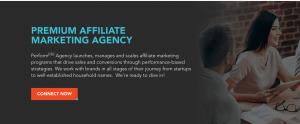Performance Marketing Agencies - Screenshot of the Perform[cb] Agency's homepage
