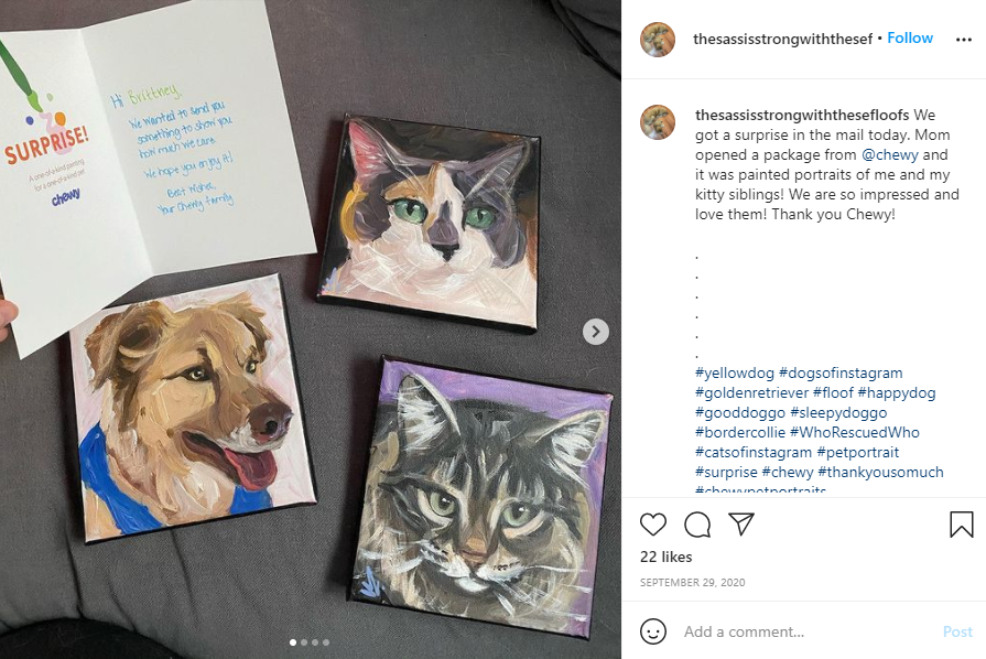 Customer appreciation - Screenshot of an Instagram post showing an owners Chewy Pet Portraits and the card they came with.