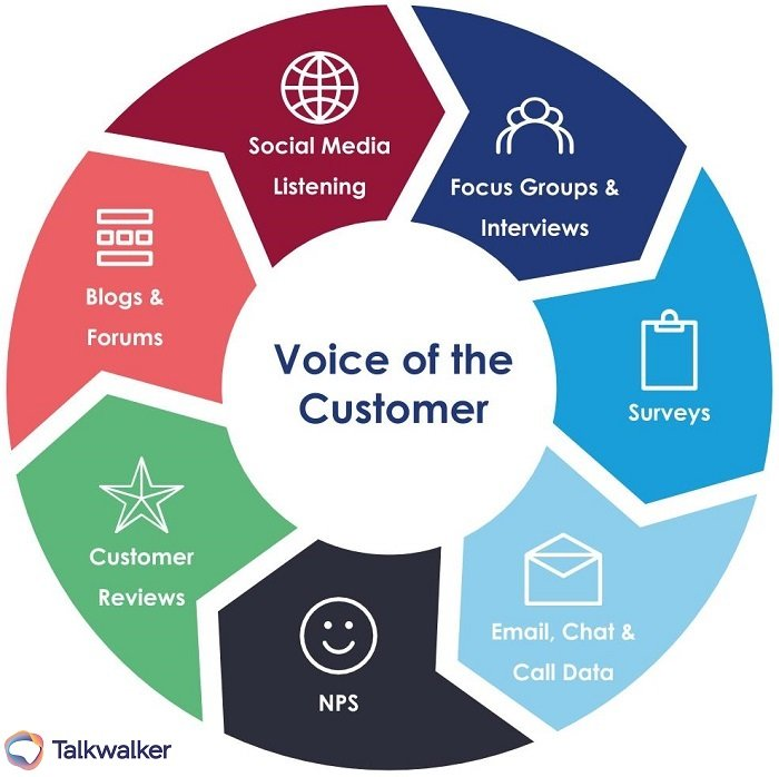 customer-centric strategy graphic on Voice of the Customer