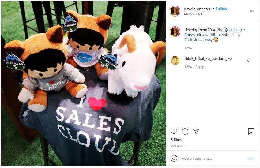 Company Swag Idea - Salesforce - Screenshot from Instagram